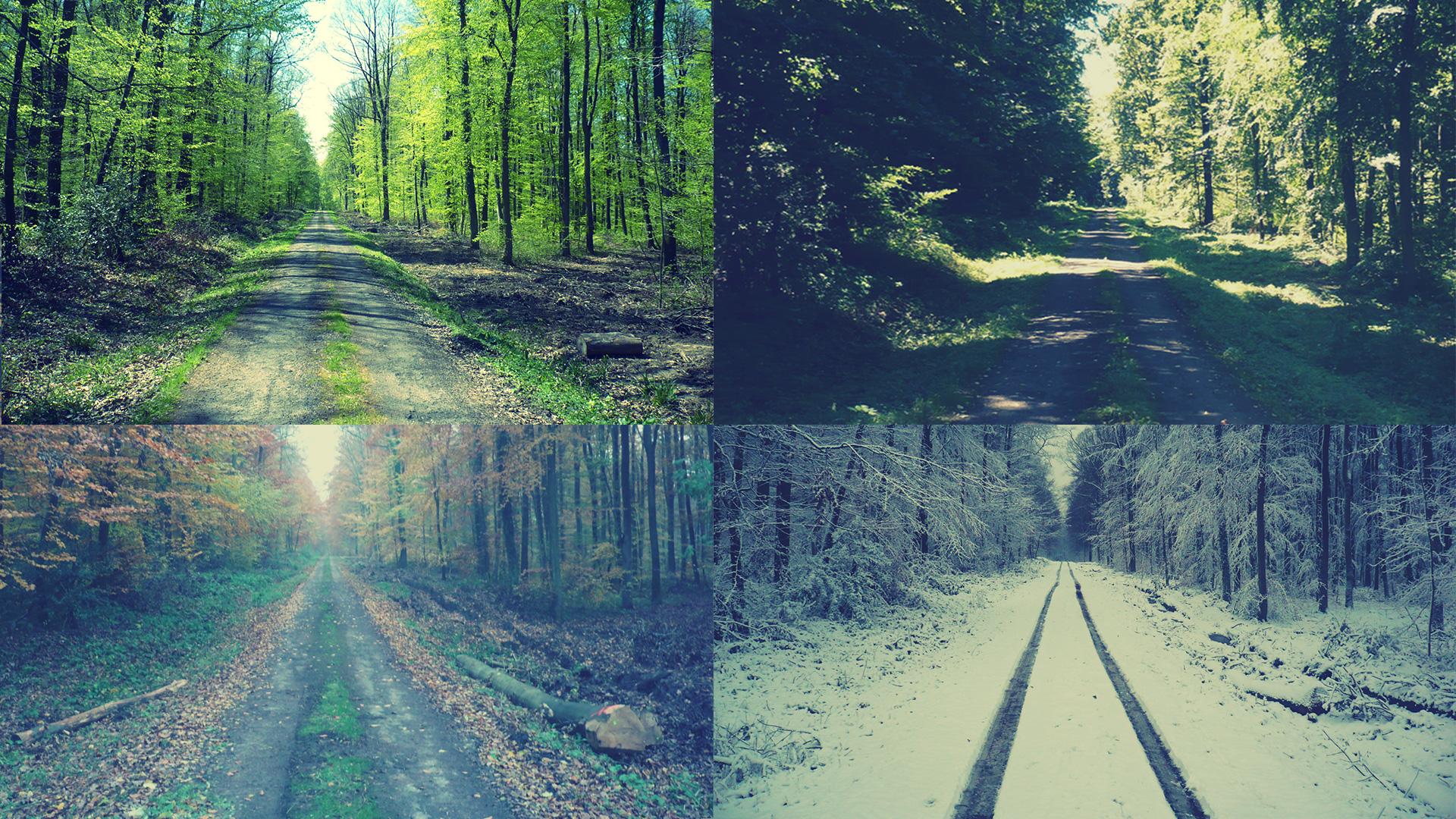 Slide seasons
